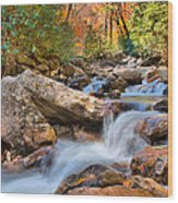 A Touch Of Autumn At Skinny Dip Falls Wood Print