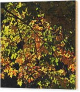 A Touch Of Fall Wood Print