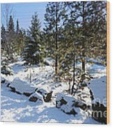 A Touch Of Snow Wood Print