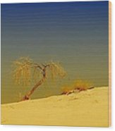A Tree At White Sands Wood Print