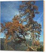 A Tree In Arcadia - Greece Wood Print