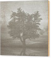 A Tree In The Fog 3 Wood Print