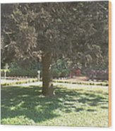 A Tree Wood Print