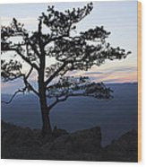 A Tree Of Mountains Wood Print