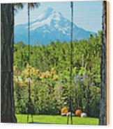 A Tree Swing Is Seen On A Summer Day Wood Print