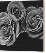 A Trio Of Roses Wood Print