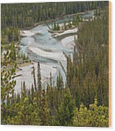 A Turn In The Bow River Wood Print