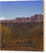 A Utah Landscape In Autumn Wood Print