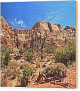 A View Along The Watchman Wood Print