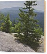 A View From A Mountain In A Vermont State Park Wood Print