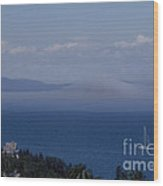 A View From Acadia Wood Print