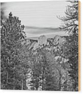 A View From Estes Park Wood Print