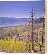 A View From Okanagan Mountain Wood Print