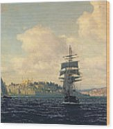 A View Of Constantinople Wood Print