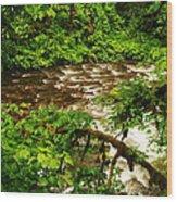 A View Of Eagle Creek Wood Print
