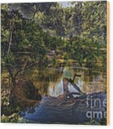 A View Of The Nature Center Merged Image Wood Print
