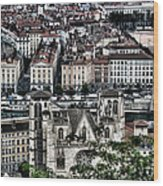 A View Of Vienne France Wood Print