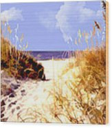 A View Through The Dunes To The Ocean Wood Print