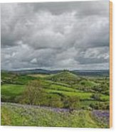 A View To Colmer's Hill Wood Print