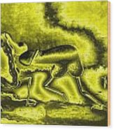A Virile Sunny Day Wood Print