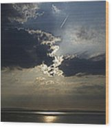 A Walk Along The Beach Wood Print by Tony Reddington