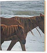 A Walk At The Beach Wood Print