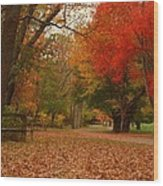 A Walk In Autumn - Holmdel Park Wood Print