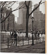 A Walk In Central Park - Antique Appeal Wood Print