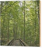 A Walk In Nature.  Wood Print