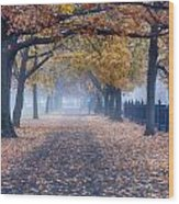A Walk In Salem Fog Wood Print