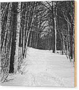 A Walk In Snow Wood Print