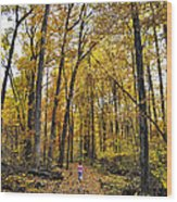 A Walk In The Dune Land Forest Wood Print