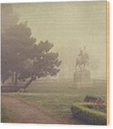 A Walk In The Fog Wood Print by Laurie Search