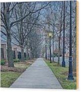 A Walk On A Sidewalk Street Alley Wood Print