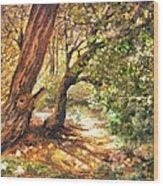 A Walk Through Wood Print