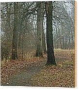 A Wandering Wood Print