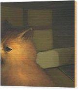 A Warm Corner For Kitty   No.2 Wood Print