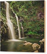 A Waterfall In Hana, Maui Wood Print