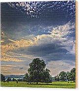 A Welsh Meadow Wood Print