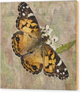 A Whisper Of Wings Wood Print