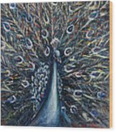 A White Peacock Wood Print