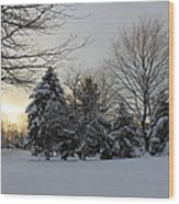A White Winter's Morning Wood Print
