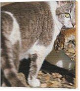 A Wild Cat Catching A Chipmunk Wood Print