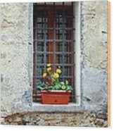 A Window In Tuscany Wood Print by Mel Steinhauer