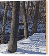 A Winter Day In New York Wood Print
