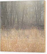 A Winter Glow Wood Print