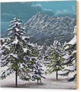 A Winter Scene... Wood Print
