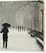 A Winter Stroll Wood Print