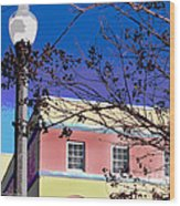 A Winters Day In Florida Wood Print
