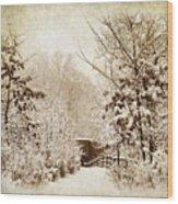 A Winter's Path Wood Print